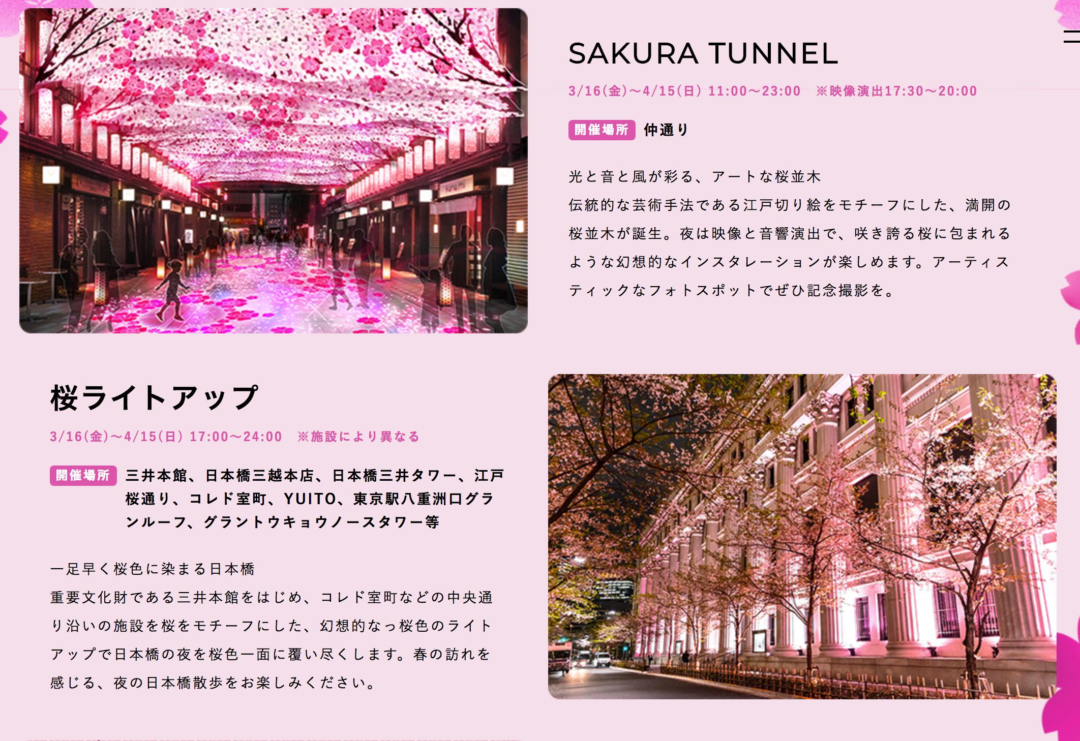 桜フェスティバル