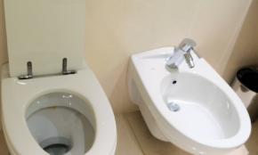 便器が2つのトイレどうやって使う?驚きの「世界のトイレ事情」4選