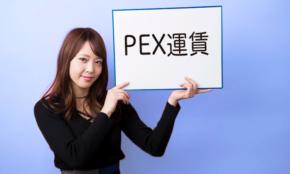 お得に海外旅行ができる「PEX運賃」って何?
