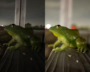 iPhone 12 Pro「ナイトモード」の実力は?カメラ性能は大幅に向上