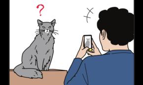 人気マンガ『男の猫道』の作者が語る「会社員の経験が、フリーになっても活きた」