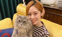 """「コロナで仕事が増えた」。猫マンガで人気の作者に聞く、""""好き""""を仕事にする道"""