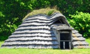 世界遺産は増えすぎか?奄美大島、縄文遺跡群の登録に見る、その功罪